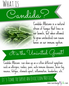 What-is-Candida